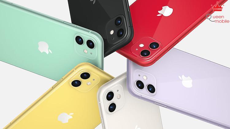 iPhone 11 màu sắc