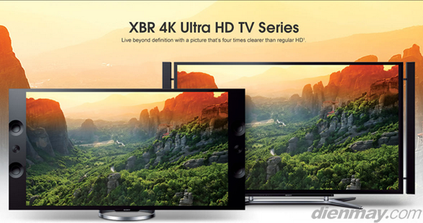 Tivi LED Sony KD-65X9004A và Sony KD-84X900