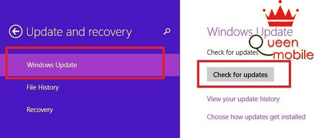 Chọn Check for updates trong tab Windows Update