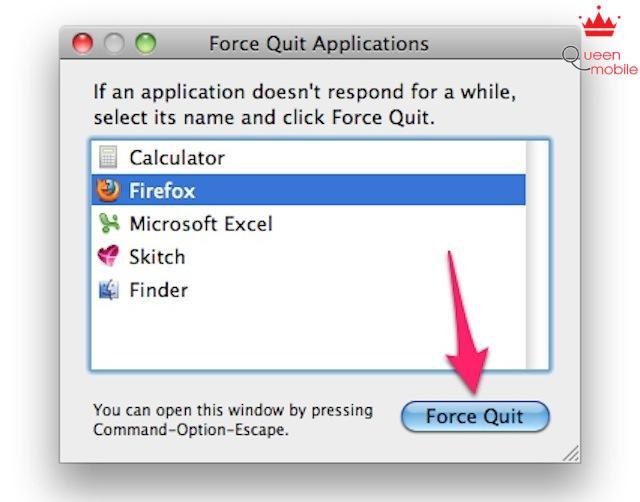 Bấm vào nút Force Quit