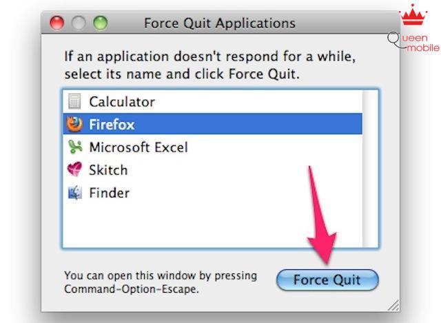 Chọn nút Force Quit