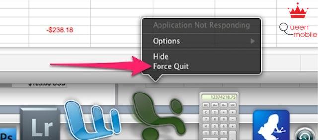 Bấm chọn biểu tượng muốn tắt và chọn Force Quit