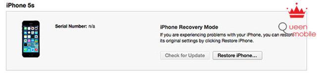 Giữ phím Shift (trên Windows) hoặc phím Option (trên MAC) rồi chọn Restore iPhone