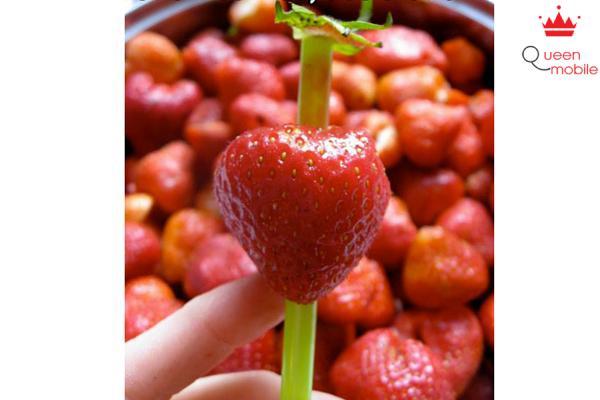 Tách lá dâu tây dễ dàng bằng ống hút