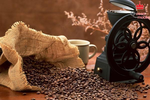 Cà phê giúp chuyển hóa axit béo