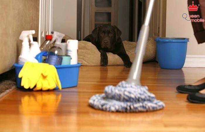 8 mẹo hay giúp bạn luôn nhàn hạ khi dọn nhà