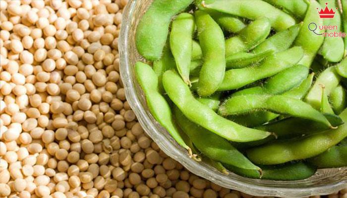 Nguồn năng lượng giàu có trong đậu nành sẽ giúp bạn tăng cân