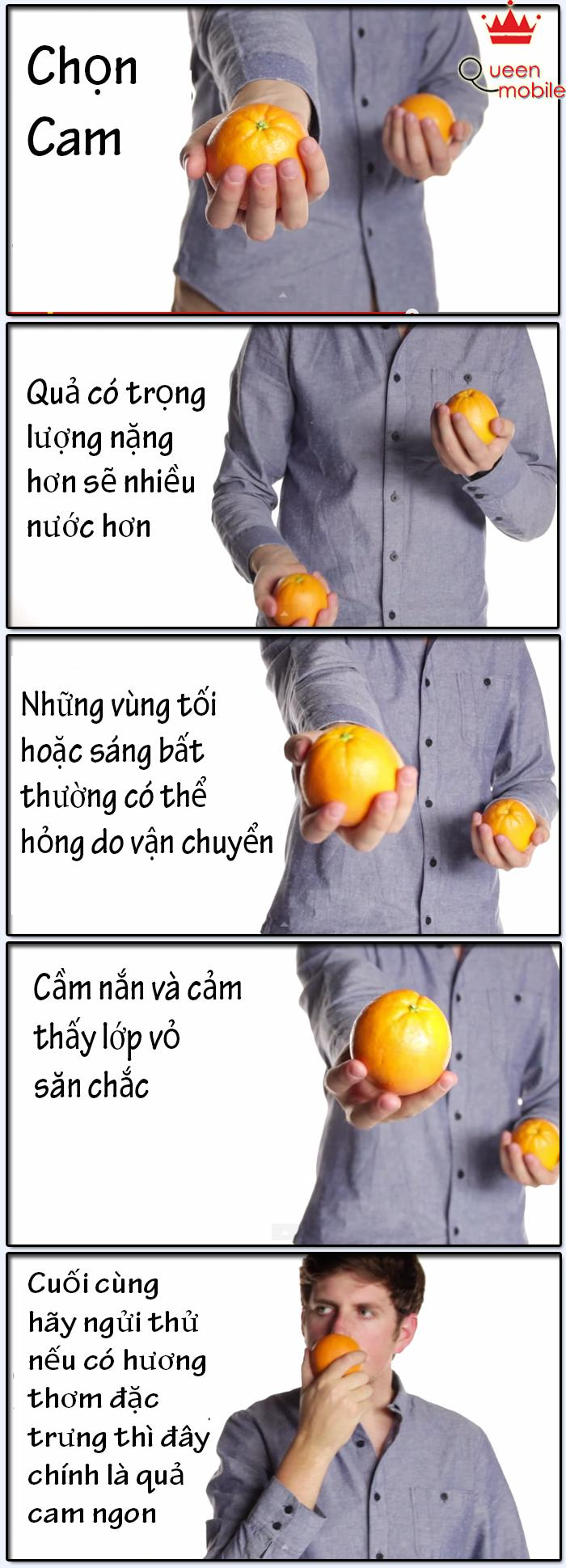 Cách chọn Cam