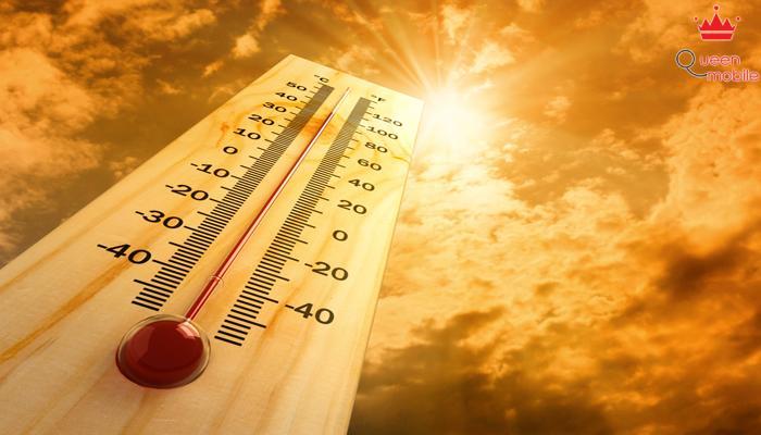 Xoài giúp cơ thể chống lại sốc nhiệt và bệnh đột quỵ nhiệt.