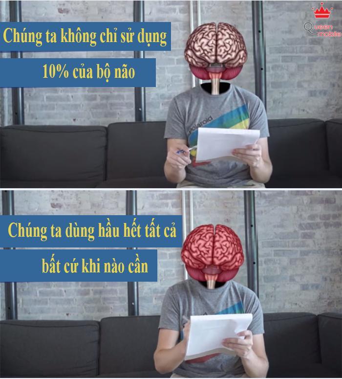 9 sự thật bất ngờ về bộ não con người