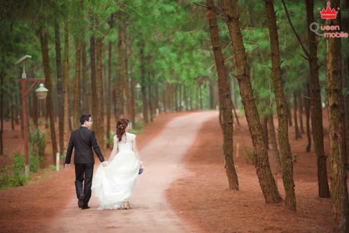 Lựa chọn không gian đồi cây như để có tấm ảnh cưới như trong truyện cổ tích